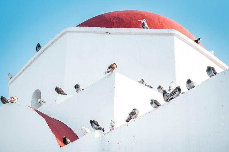 Kykladen Inselhoping weiße Kirche Santorini Mykonos