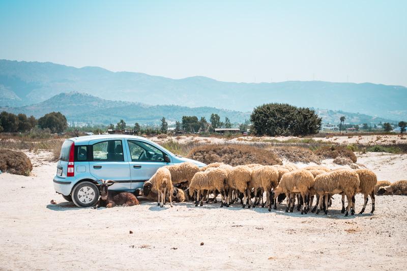 Mietwagen Griechenland Insel Kos