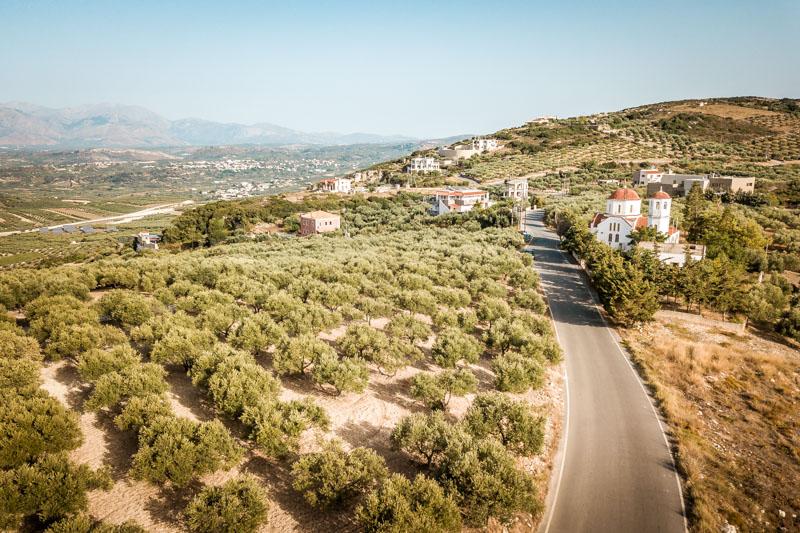 Griechenland Kreta vegetation landschaft