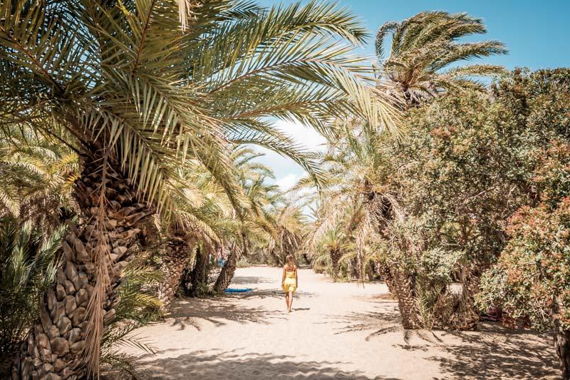 kreta palmenstrände vai preveli