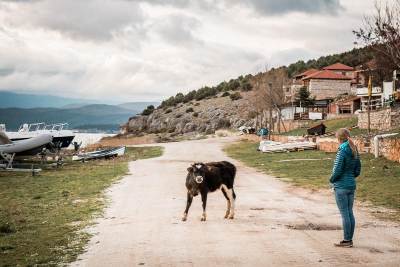 prespa rind psarades makedonien griechenland