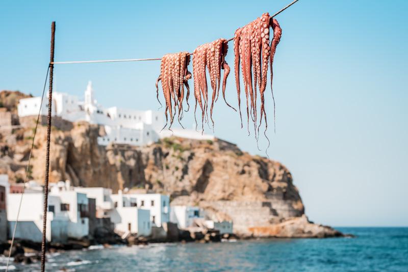 Griechische Delikatessen Octopus Mediterrane Küche