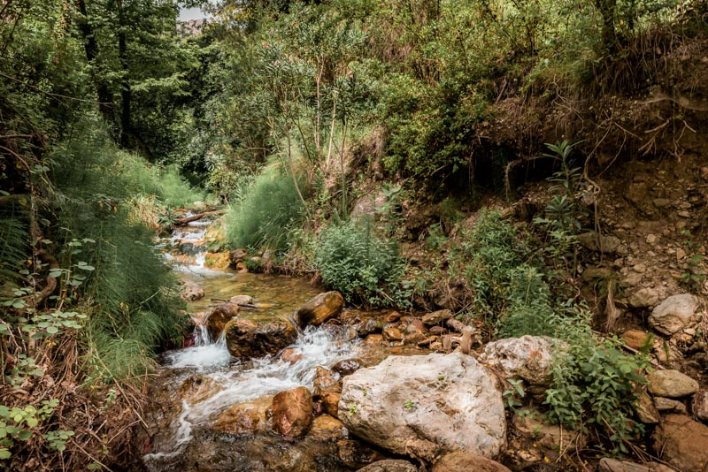 samos natur wanderungen wälder