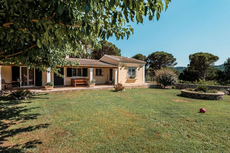 villa pine forest house korfu