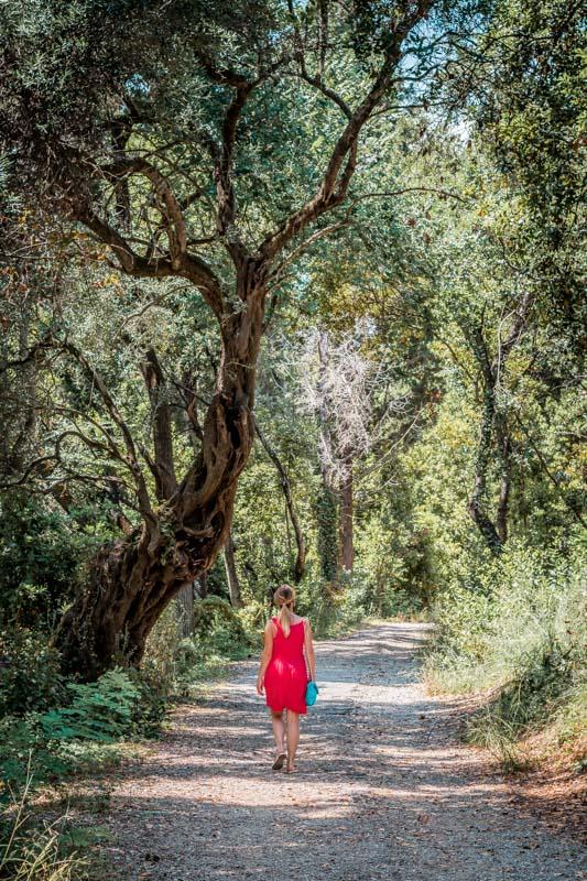Mon Repos Park Korfu Sehenswuerdigkeiten