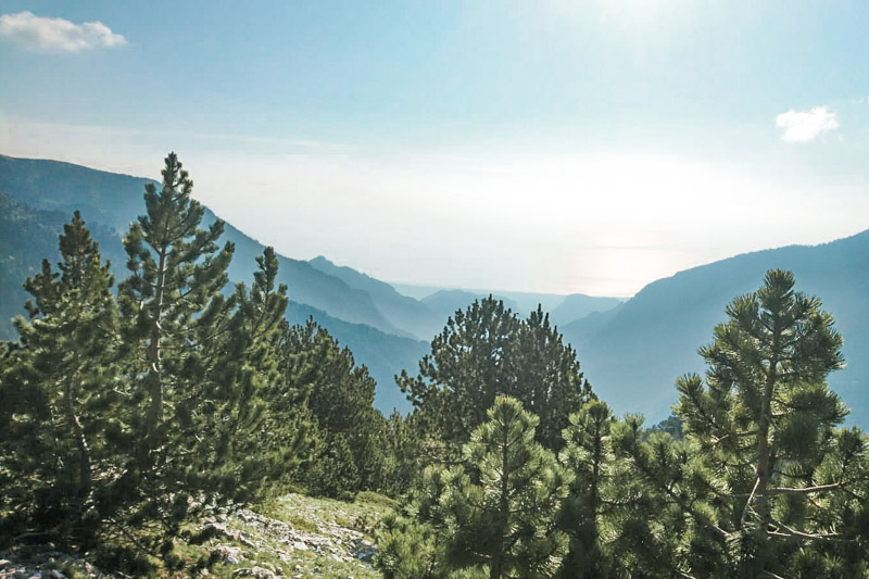 Natur Griechenland Verwunschene Maerchenwaelder Makedonien